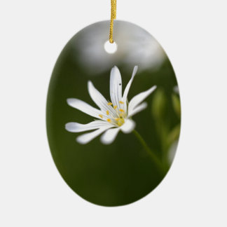 Flower of the  greater stitchwort ceramic oval ornament