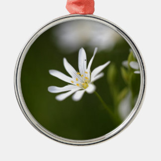Flower of the  greater stitchwort Silver-Colored round ornament