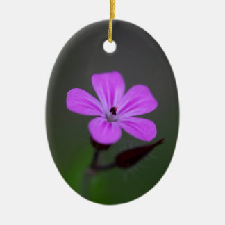 Flower of the Herb-Robert, Geranium robertianum. Ceramic Oval Ornament