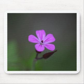 Flower of the Herb-Robert, Geranium robertianum. Mouse Pad