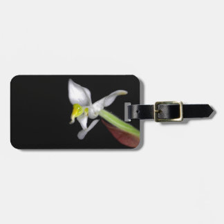 Flower of the orchid Ludisia discolor Bag Tag