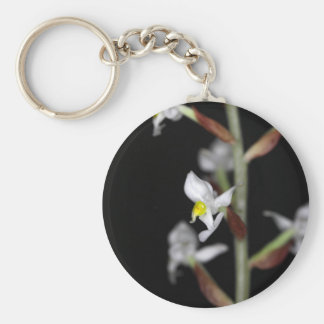 Flower of the orchid Ludisia discolor Basic Round Button Keychain