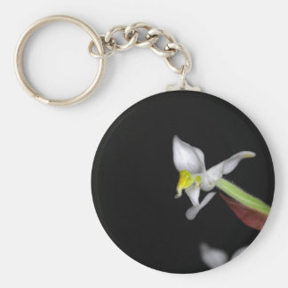Flower of the orchid Ludisia discolor Keychain