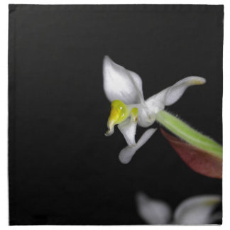 Flower of the orchid Ludisia discolor Napkin