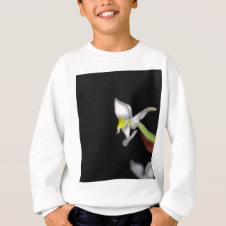 Flower of the orchid Ludisia discolor Sweatshirt