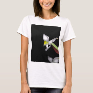 Flower of the orchid Ludisia discolor T-Shirt