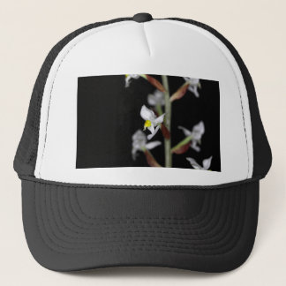 Flower of the orchid Ludisia discolor Trucker Hat