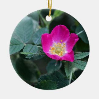 Flower of the wild Soft Downy Rose Round Ceramic Ornament