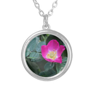Flower of the wild Soft Downy Rose Silver Plated Necklace