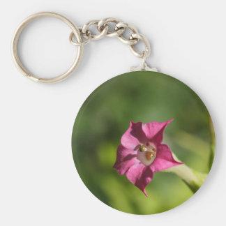 Flower of tobacco (Nicotiana tabacum) Keychain