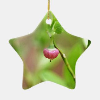 Flower on a European Blueberry bush Ceramic Star Ornament