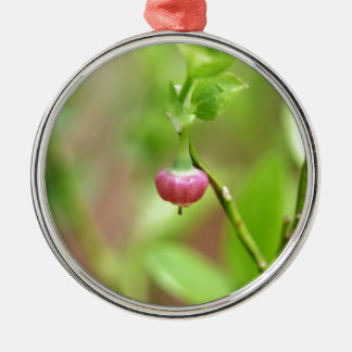 Flower on a European Blueberry bush Silver-Colored Round Ornament