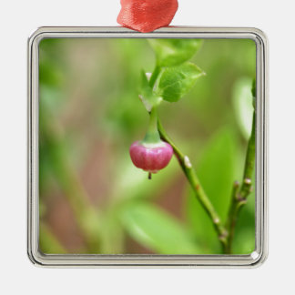 Flower on a European Blueberry bush Silver-Colored Square Ornament
