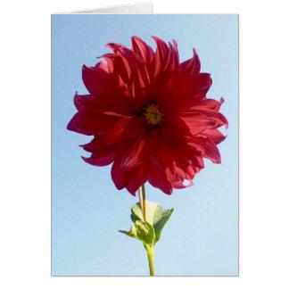 Flower on the Sky Card
