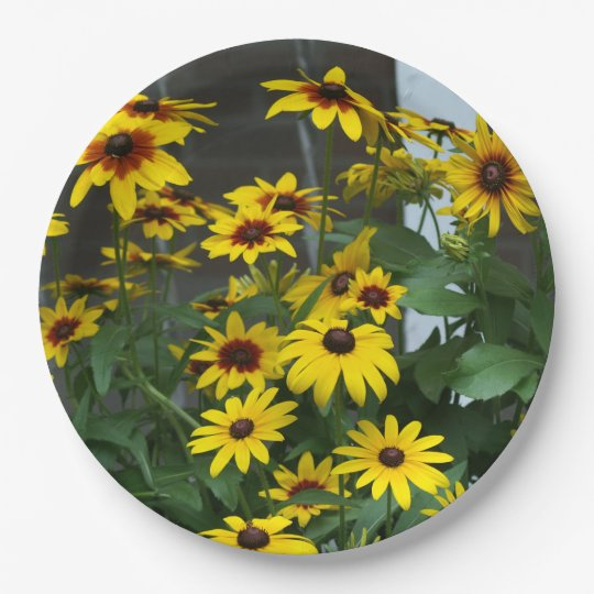Flower, Paper Plates. Paper Plate