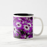 Flower pattern, Kuekenhof Gardens, Lisse, Two-Tone Coffee Mug