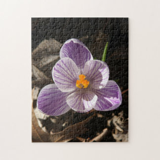Flower Photo Puzzle