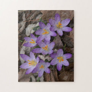 Flower Photo Puzzle. Jigsaw Puzzle