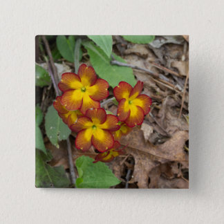 Flower Photography 2 Inch Square Button