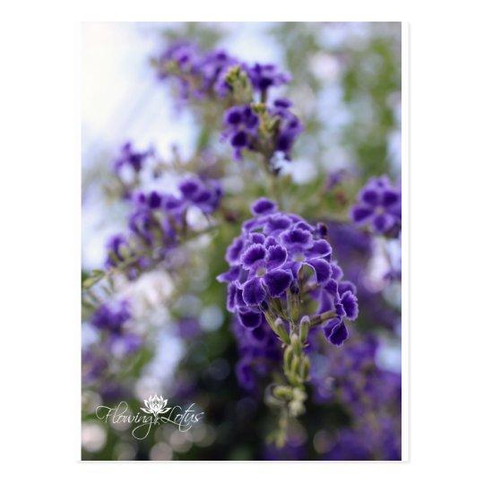 Flower Postcard- Thailand Postcard