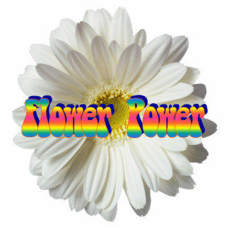 Flower Power 2 Pin Photo Sculpture Button