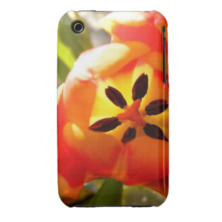 flower power iPhone 3 Case-Mate cases