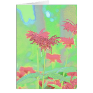 Flower Scapes Bee Balm Greeting Card