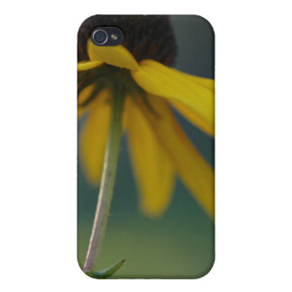 Flower Scapes Rube Cover For iPhone 4