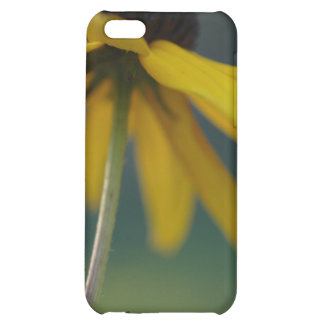 Flower Scapes Rube Cover For iPhone 5C