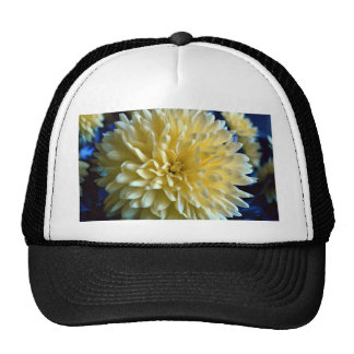 Flower, still life mesh hat