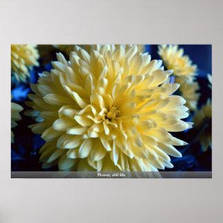 Flower, still life poster
