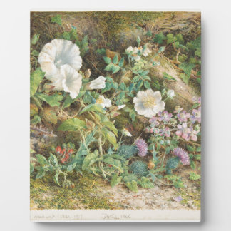 Flower Study - John Jessop Hardwick Plaque