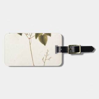 Flower Study - Watercolor Luggage Tag