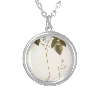Flower Study - Watercolor Silver Plated Necklace
