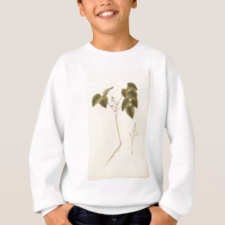 Flower Study - Watercolor Sweatshirt