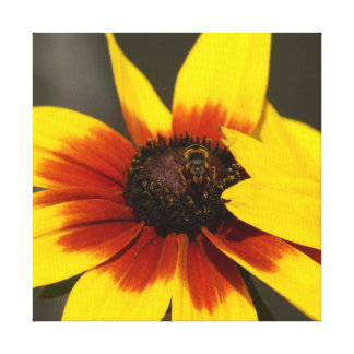 Flower with Hoverfly, Canvas Print.