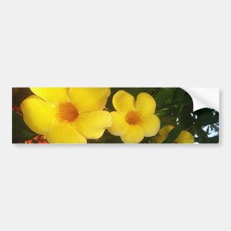 Flower Yellow Cocoa Beach 2014 jGibney The MUSEUM Bumper Sticker