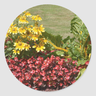 Flowerbed of coneflowers and begonias classic round sticker