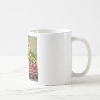 Flowerbed of coneflowers and begonias coffee mug