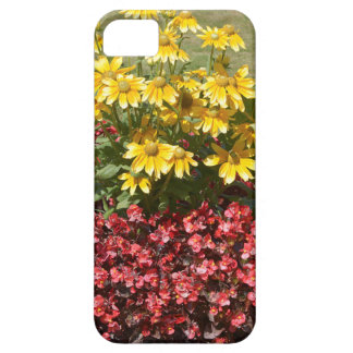 Flowerbed of coneflowers and begonias iPhone 5 cases