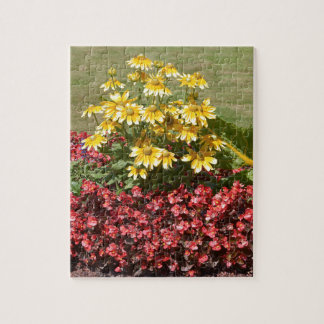 Flowerbed of coneflowers and begonias jigsaw puzzle