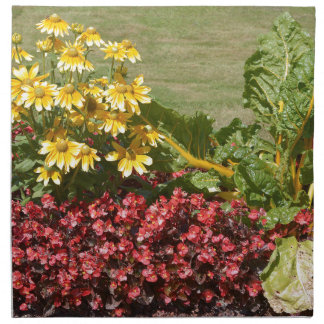 Flowerbed of coneflowers and begonias napkin