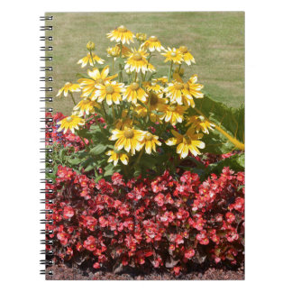 Flowerbed of coneflowers and begonias notebook