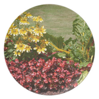 Flowerbed of coneflowers and begonias plate