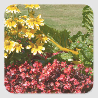 Flowerbed of coneflowers and begonias square sticker