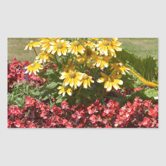Flowerbed of coneflowers and begonias sticker