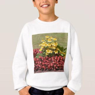 Flowerbed of coneflowers and begonias sweatshirt