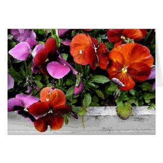 Flowerbox of Pansies Card