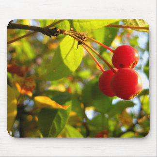 Flowering Crabapple Fall Mousepad
