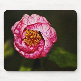 Flowering Maple Mousepad